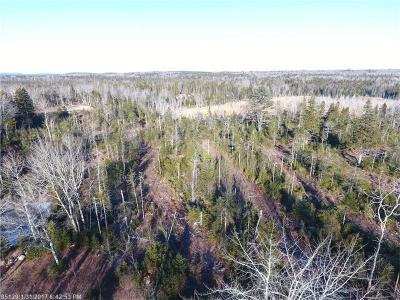Winter Harbor Residential Lots & Land For Sale: 0 Newman Street