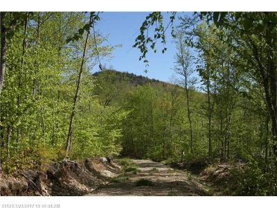 Residential Lots & Land For Sale: 0 Mountain Rd