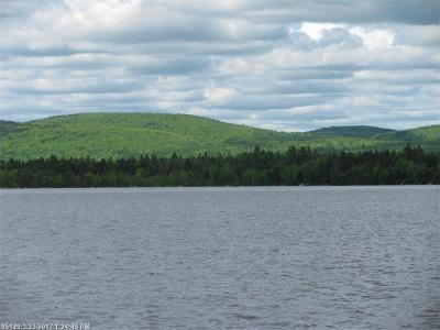 Lakeville Residential Lots & Land For Sale: 184 Boyce Cove Rd
