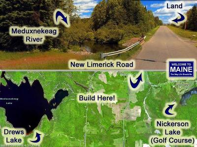 Linneus Residential Lots & Land For Sale: Lot 18-1 New Limerick Rd