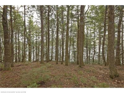 Lakeville Residential Lots & Land For Sale: 6-6a Lombard Lk