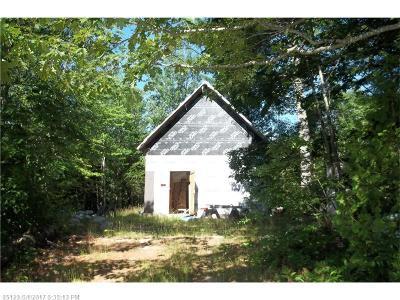 Sullivan Single Family Home For Sale: 626 Tunk Lake Road