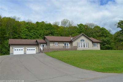 Portage Lake Single Family Home For Sale: 94 Cottage Rd