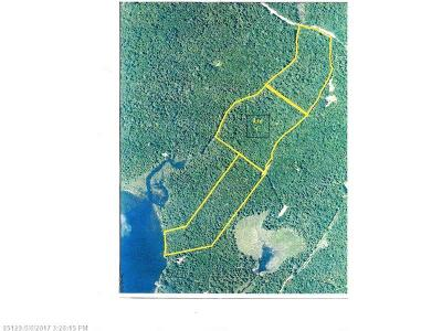 Lakeville Residential Lots & Land For Sale: Lot C Salmon Road