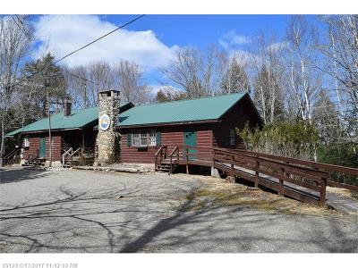 Princeton ME Single Family Home For Sale: $595,000