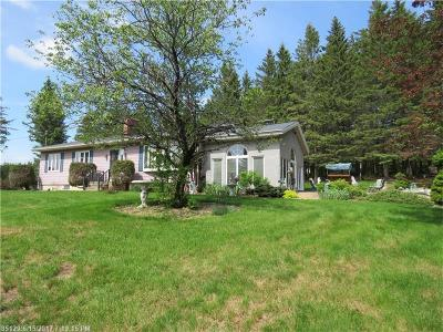 Caribou Single Family Home For Sale: 19 Baird Rd