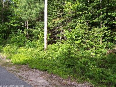 Gouldsboro Residential Lots & Land For Sale: Lot 2 Gouldsboro Point Road
