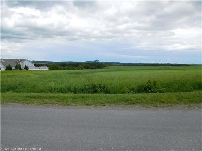 Presque Isle Residential Lots & Land For Sale: 421 Centerline Rd