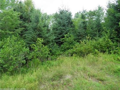 Oakfield Residential Lots & Land For Sale: 17 Webb Rd