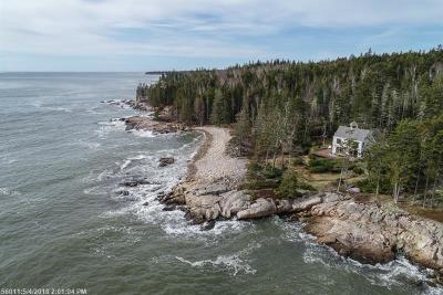 Gouldsboro Single Family Home For Sale: 193 Lighthouse Point Rd