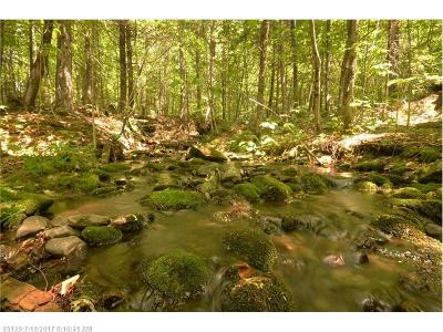 Mount Chase Residential Lots & Land For Sale: 0 Ackley Pond Rd