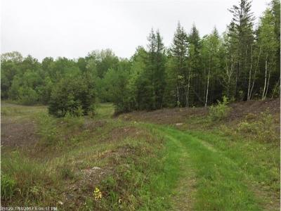 Hampden Residential Lots & Land For Sale: 00 Canaan Rd