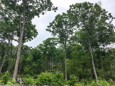 Bucksport ME Residential Lots & Land For Sale: $38,000