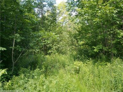 Prentiss Twp T7 R3 Nbpp Residential Lots & Land For Sale: Lot 4-39 & 41 Tar Ridge Rd