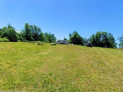 Danforth Residential Lots & Land For Sale: 16a Chadwick Point Rd