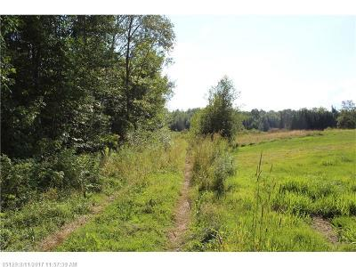 Bradford ME Residential Lots & Land For Sale: $45,000