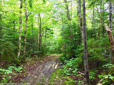 Aroostook County Residential Lots & Land For Sale: Lot 26 Westmanland Rd