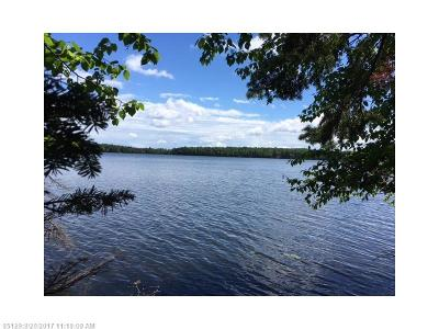 Residential Lots & Land For Sale: 20b Chestnut Ln