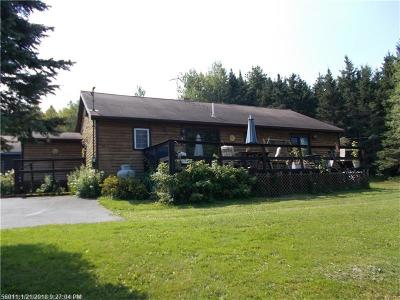 Presque Isle Single Family Home For Sale: 79 Maple Grove Rd