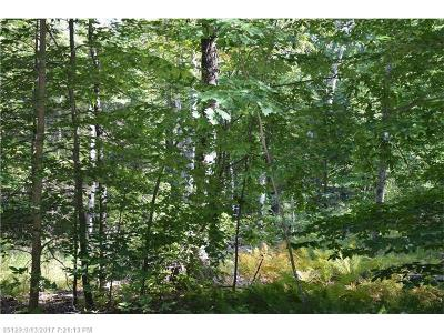 York County, Cumberland County Residential Lots & Land For Sale: 169 B Orchard Rd