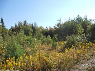 Prentiss Twp T7 R3 Nbpp Residential Lots & Land For Sale