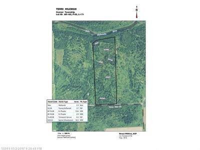 Residential Lots & Land For Sale: 171 Townline