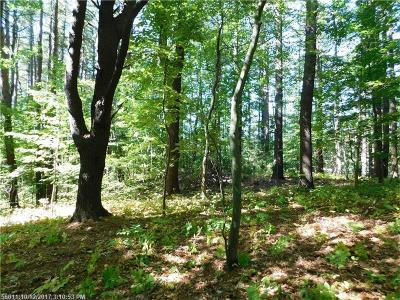 York County, Cumberland County Residential Lots & Land For Sale: 27 Lunt Rd