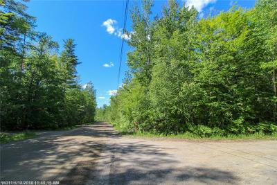 Residential Lots & Land For Sale: 0 White Point Estates Rd