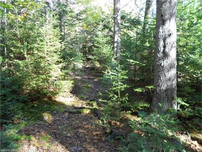 Gouldsboro Residential Lots & Land For Sale: 345 Justin Ln