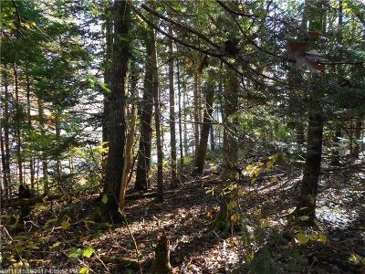 Gouldsboro Residential Lots & Land For Sale: Lot 4 Justin Ln