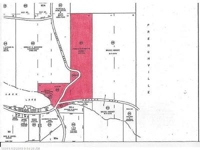 Fort Kent Residential Lots & Land For Sale: 383 Black Lake Rd