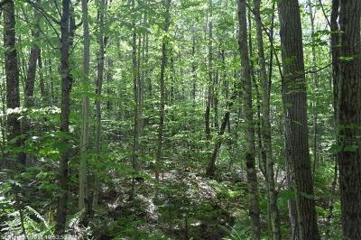 York County, Cumberland County Residential Lots & Land For Sale: Lot 58-30-4 Summit Rd