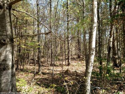Residential Lots & Land For Sale: 0 Howland Rd