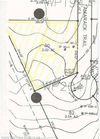 Bangor Residential Lots & Land For Sale: 301 Tamarack Trl