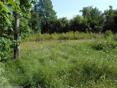 Residential Lots & Land For Sale: 9 King St