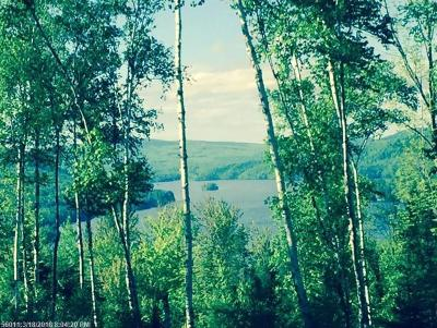 Caratunk ME Residential Lots & Land For Sale: $79,900