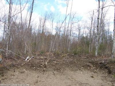 Lee Residential Lots & Land For Sale: Lot 1 Skunk Hill Rd
