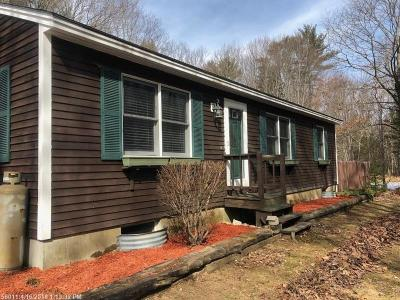 Standish Single Family Home For Sale: 480 Manchester Rd