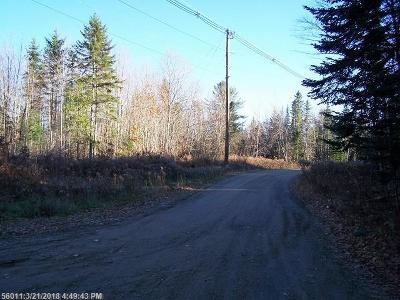 Lincoln Residential Lots & Land For Sale: Lot 3/21 Half Township