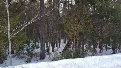 Mattawamkeag Residential Lots & Land For Sale: 888 Main Street