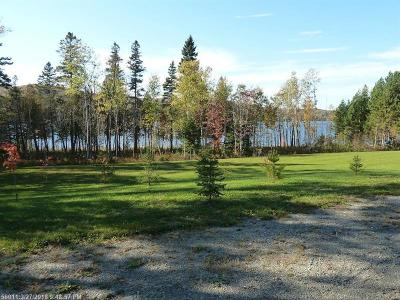 Eagle Lake Residential Lots & Land For Sale: 1137 Sly Brook Road