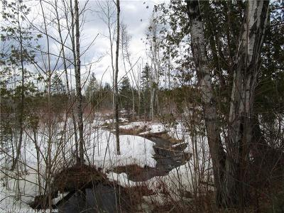 Prentiss Twp T7 R3 Nbpp Residential Lots & Land For Sale: 14 Molly Osgood