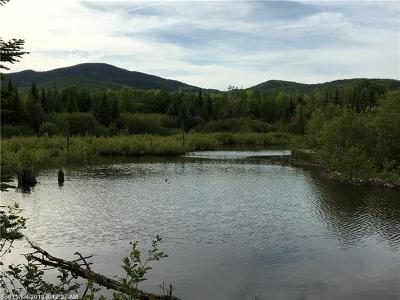 Mount Chase Residential Lots & Land For Sale: 76 Mountain Rd