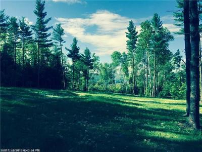 Caratunk ME Residential Lots & Land For Sale: $25,000