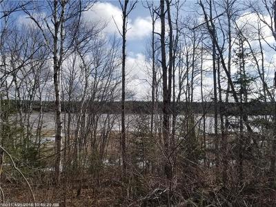 Gouldsboro Residential Lots & Land For Sale: 385 West Bay Rd
