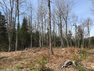 Monson ME Residential Lots & Land For Sale: $34,500