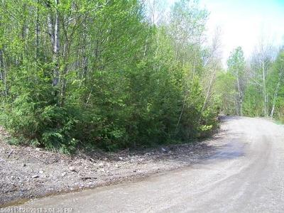 Prentiss Twp T7 R3 Nbpp Residential Lots & Land For Sale: Rainy Road