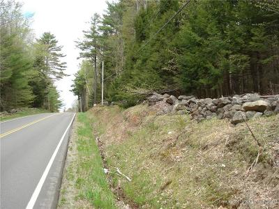 Residential Lots & Land For Sale: 368 Lincolnville Avenue
