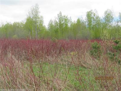 Caribou Residential Lots & Land For Sale: 94 Campground Hill Road