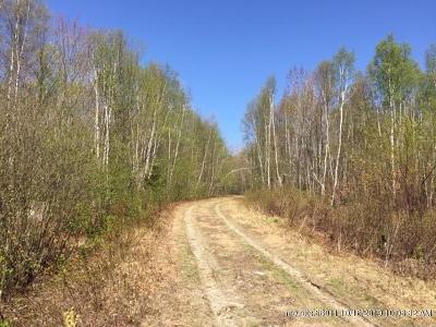 Residential Lots & Land For Sale: Lots 22-23 Jaquith Pond Road